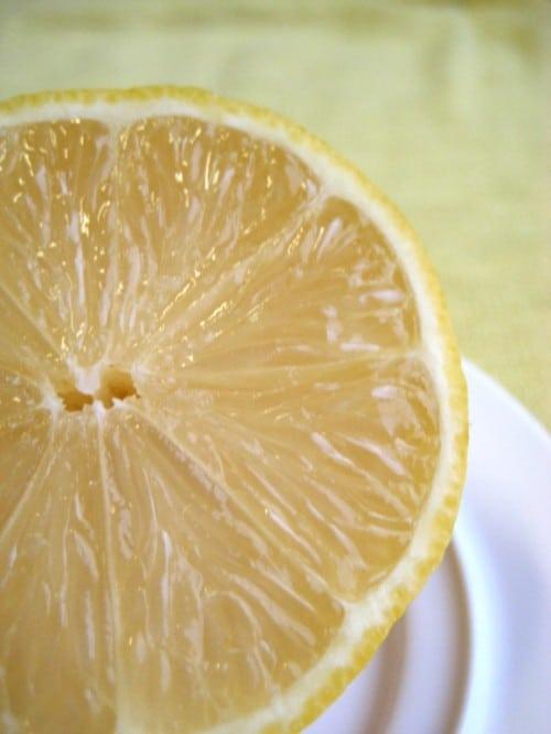 Lemon Basil Parmesan Pasta