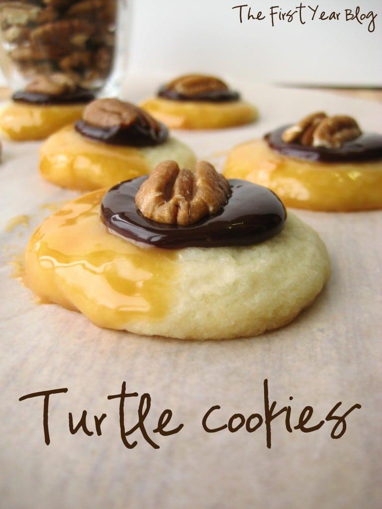 Turtle Cookies 2
