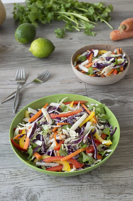 Red Cabbage Salad with Jicama and Peppers | thefirstyearblog.com