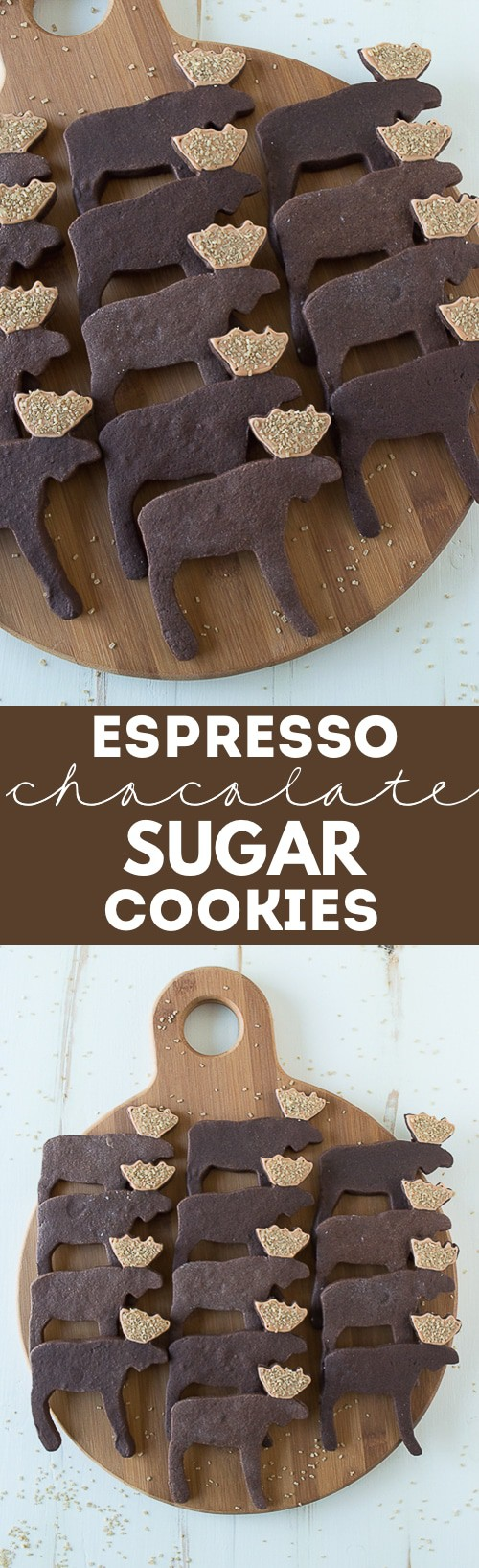 Use a moose cookie cutter to make these ADORABLE espresso chocolate moose sugar cookies!! Or use any cookie cutter with this espresso chocolate sugar cookie recipe!