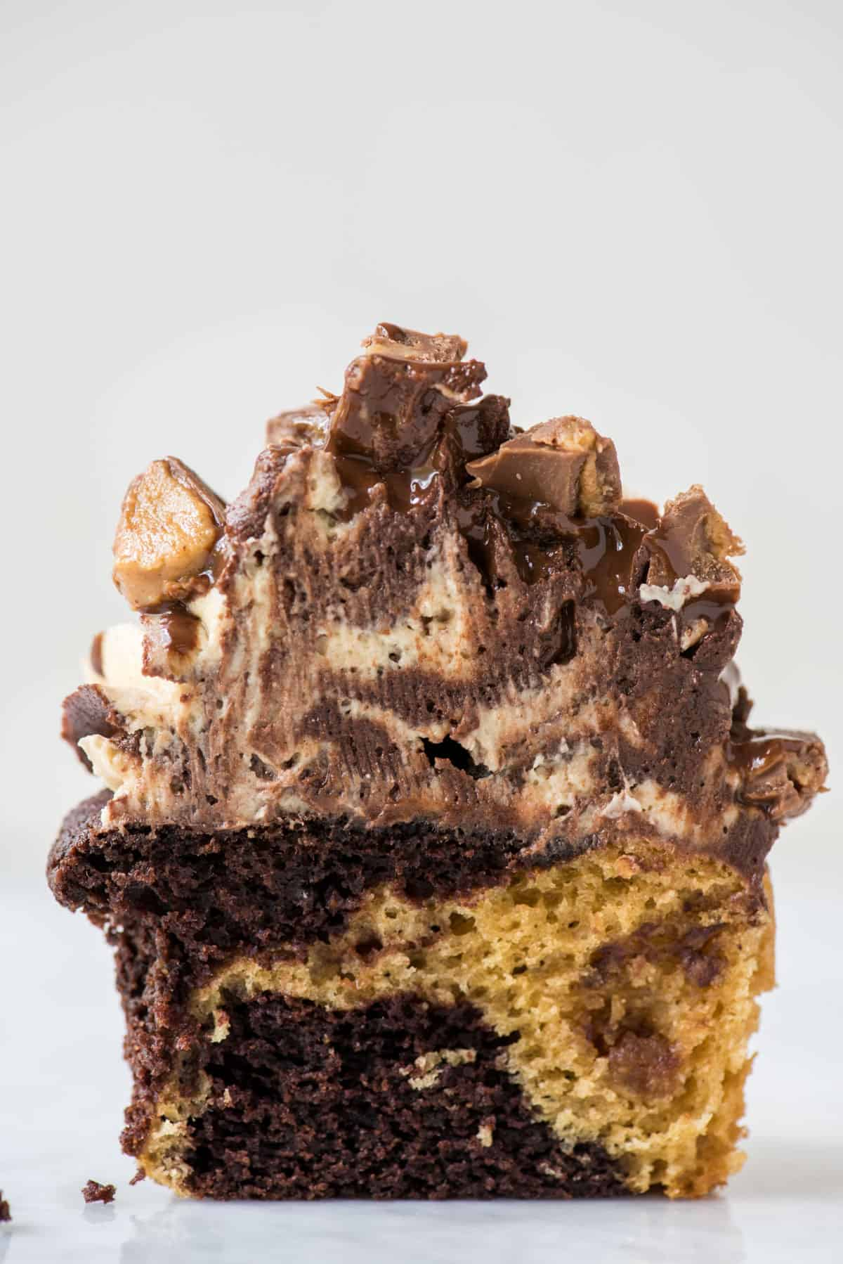 chocolate peanut butter cupcake with swirled chocolate peanut butter frosting cut in half on white background