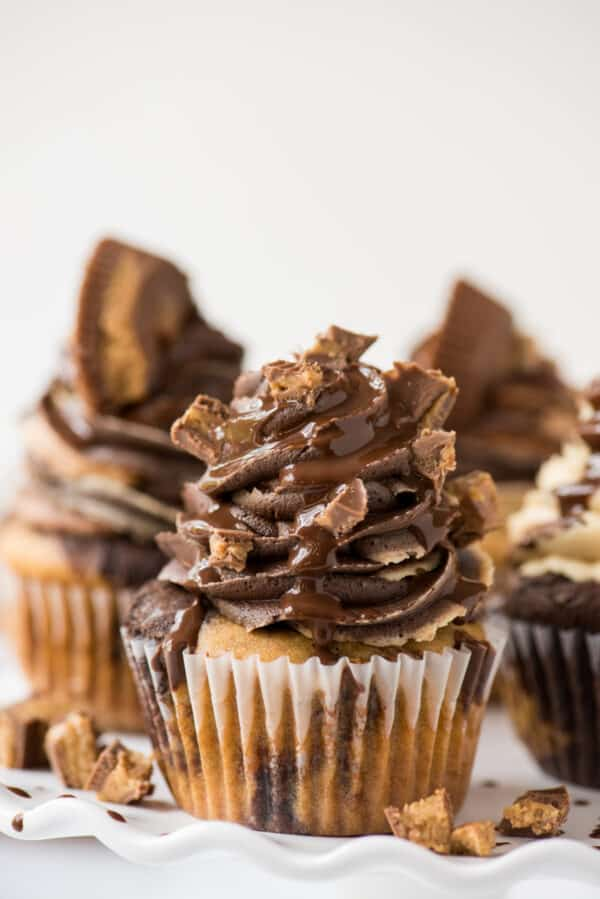 chocolate peanut butter reese's cupcakes on white tray with white background