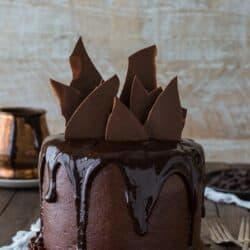 Easy and delicious Chocolate Chocolate Cake with chocolate buttercream and chocolate shatter on top.