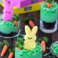 Peeps Bunny Pudding Cups