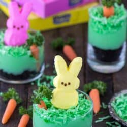 Simple, no bake easter dessert! Peeps bunny pudding cup with oreos, pudding, coconut, a mini carrot and peeps!