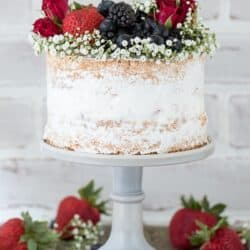 Naked berry ice cream cake recipe. A naked cake featuring 2 layers of vanilla bean cake and a layer of homemade vanilla bean berry ice cream.