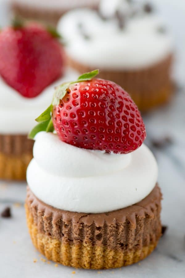 These are the BEST mini chocolate cheesecakes! 15 minutes to bake and you can add any toppings you want. Learn our tricks for making perfect chocolate cheesecakes.