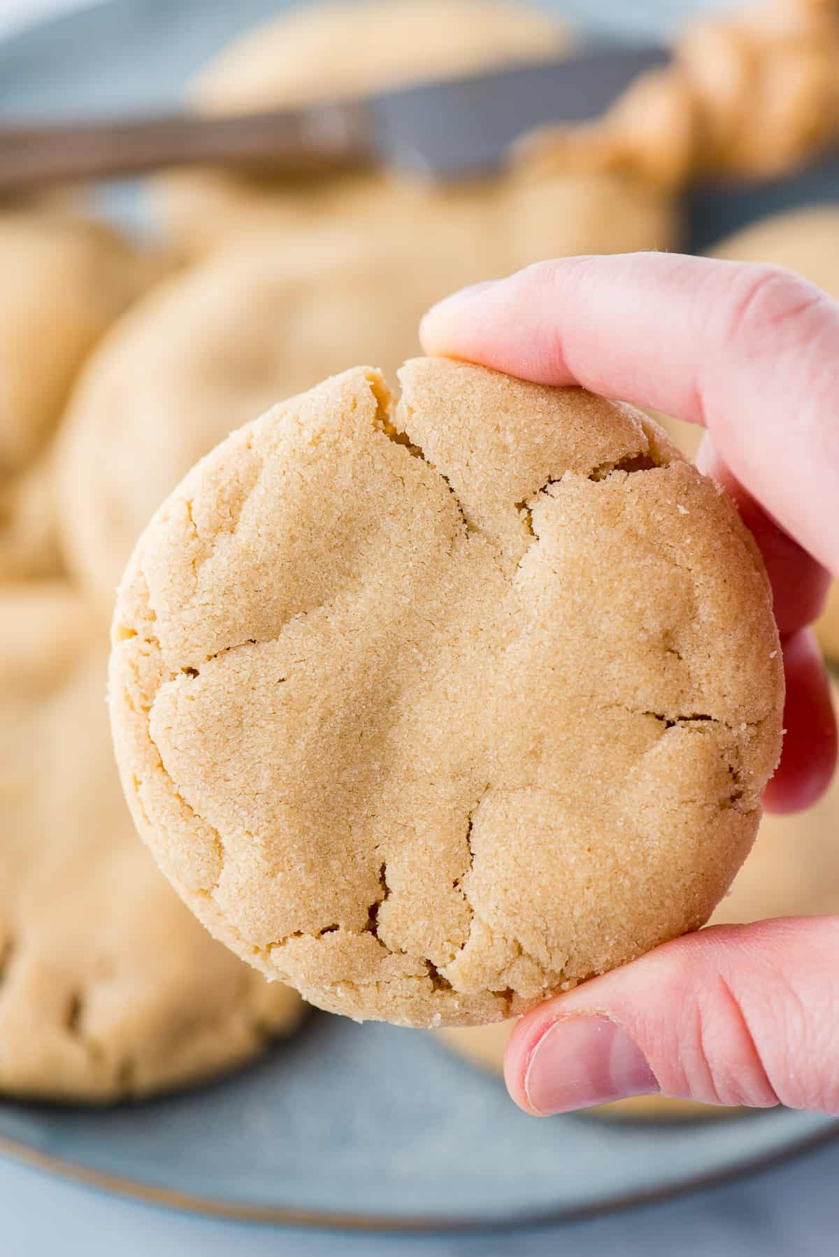 hand holding peanut butter cookie