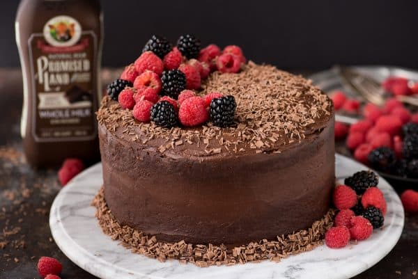 Decadent and moist 2 layer chocolate velvet cake with chocolate milk in the batter! Top with fresh berries, chocolate shavings, chocolate chips - whatever you want!