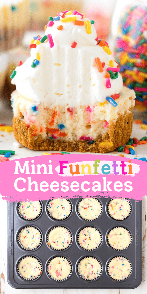 mini funfetti cheesecakes with rainbow sprinkles collage with text overlay
