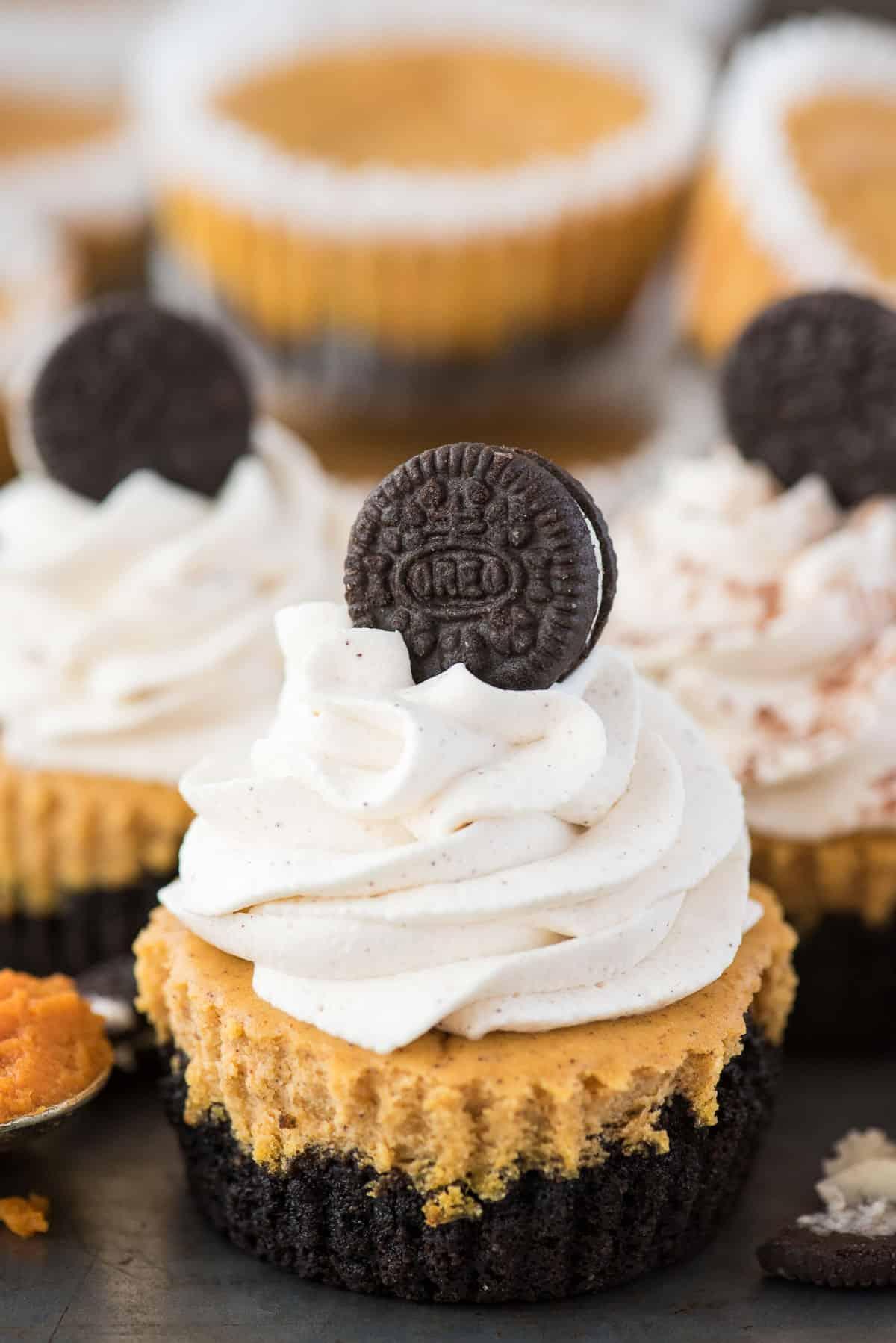 mini pumpkin cheesecake with oreo cookie crust with swirl of whipping cream and mini oreo on top