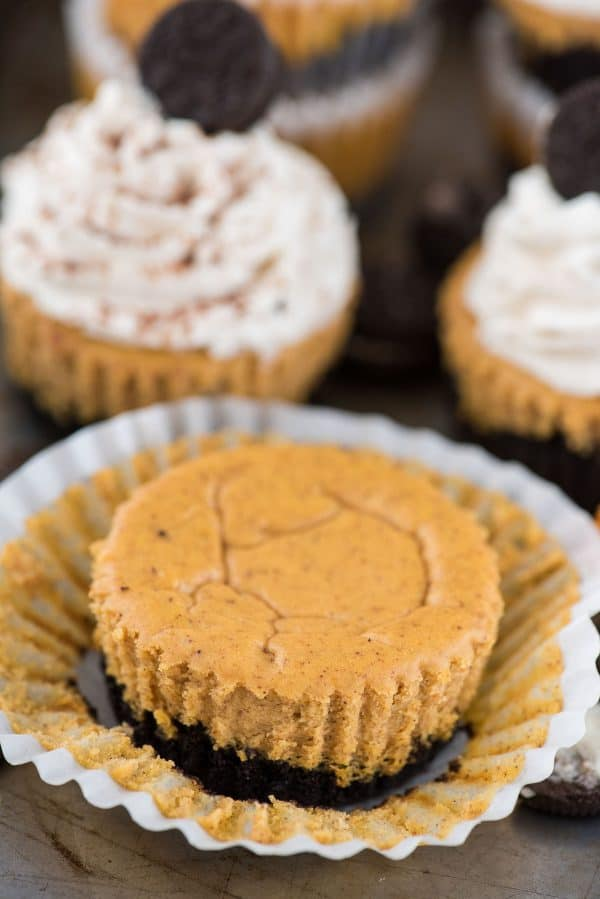 mini pumpkin cheesecake with oreo cookie crust in muffin liner