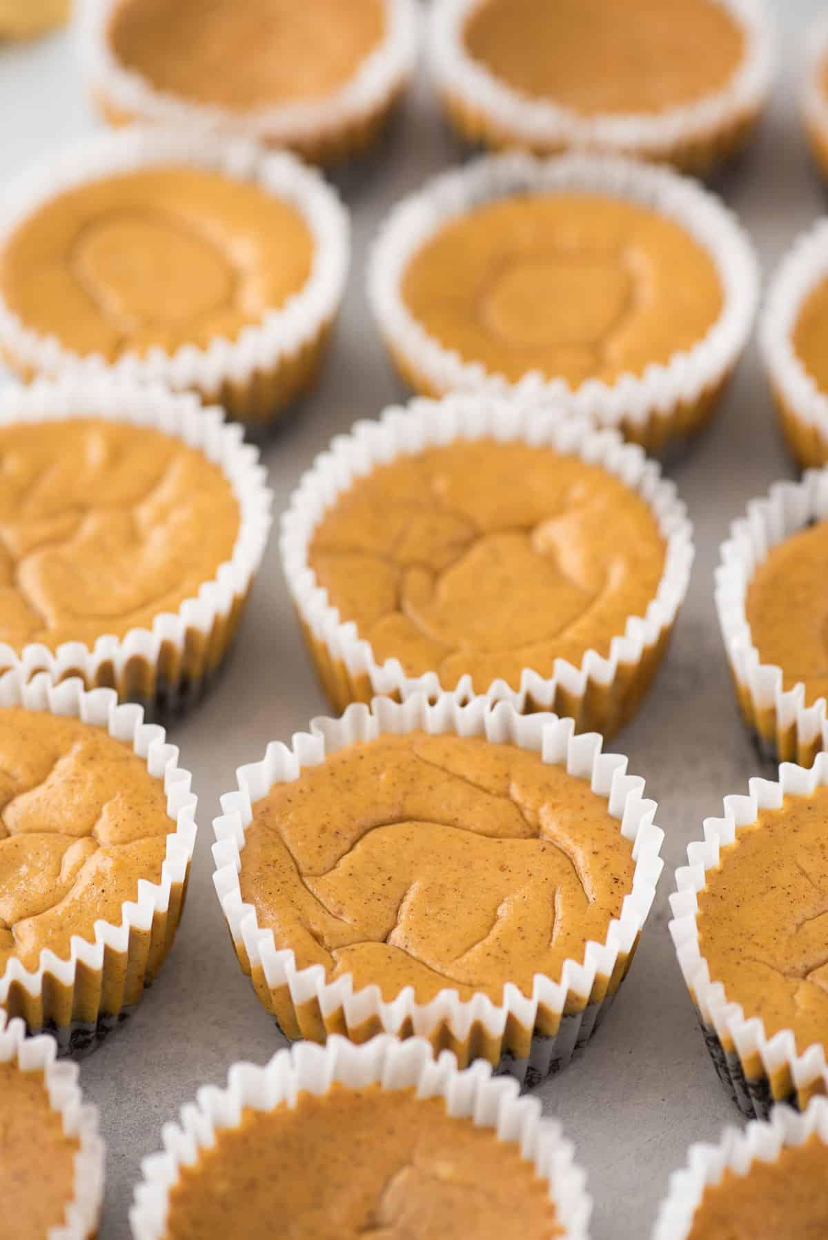 plain mini pumpkin cheesecakes in a row on gray background