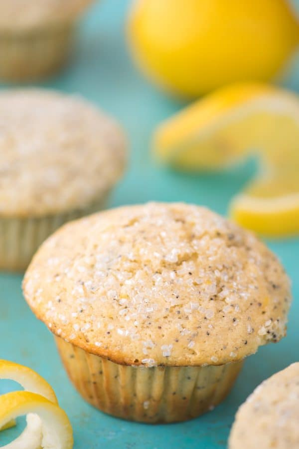 lemon poppy seed muffin on teal background with lemon slices
