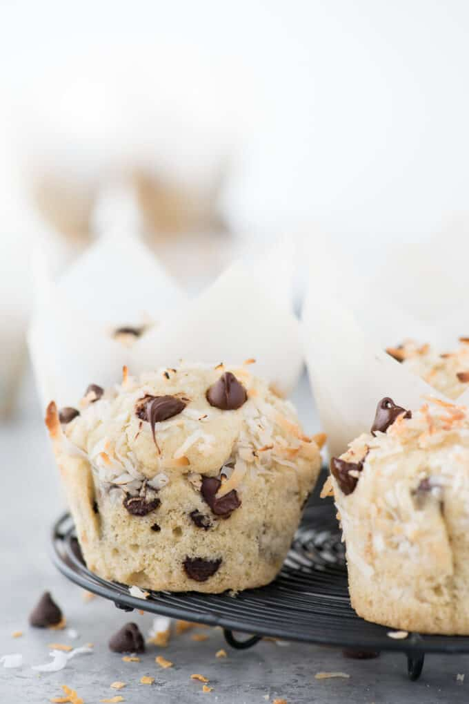 Coconut chocolate chip muffins on black wire cooling rack