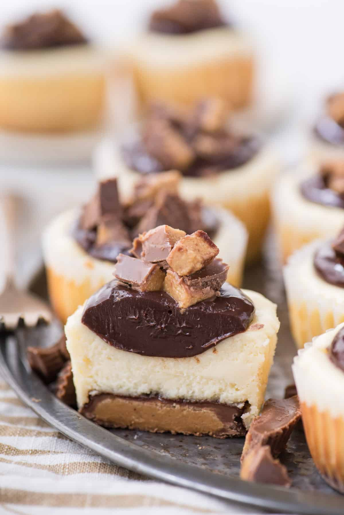 mini cheesecake sliced in half with reese's peanut butter cup bottom as the crust