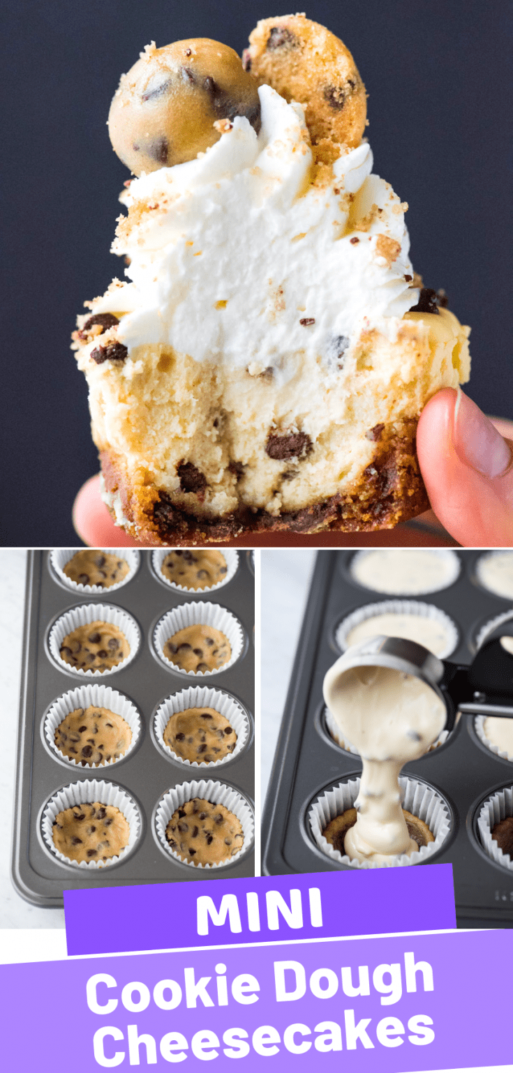 Combine your love for cheesecake and chocolate chip cookies and make mini chocolate chip cookie dough cheesecakes! Use chocolate chip cookie dough for the cheesecake crust and add mini chocolate chips to the cheesecake batter. This is an easy to make chocolate chip cheesecake recipe in a muffin pan. #minicheesecakes #cookiedoughcheesecake #minichocolatechipcookiecheesecakes