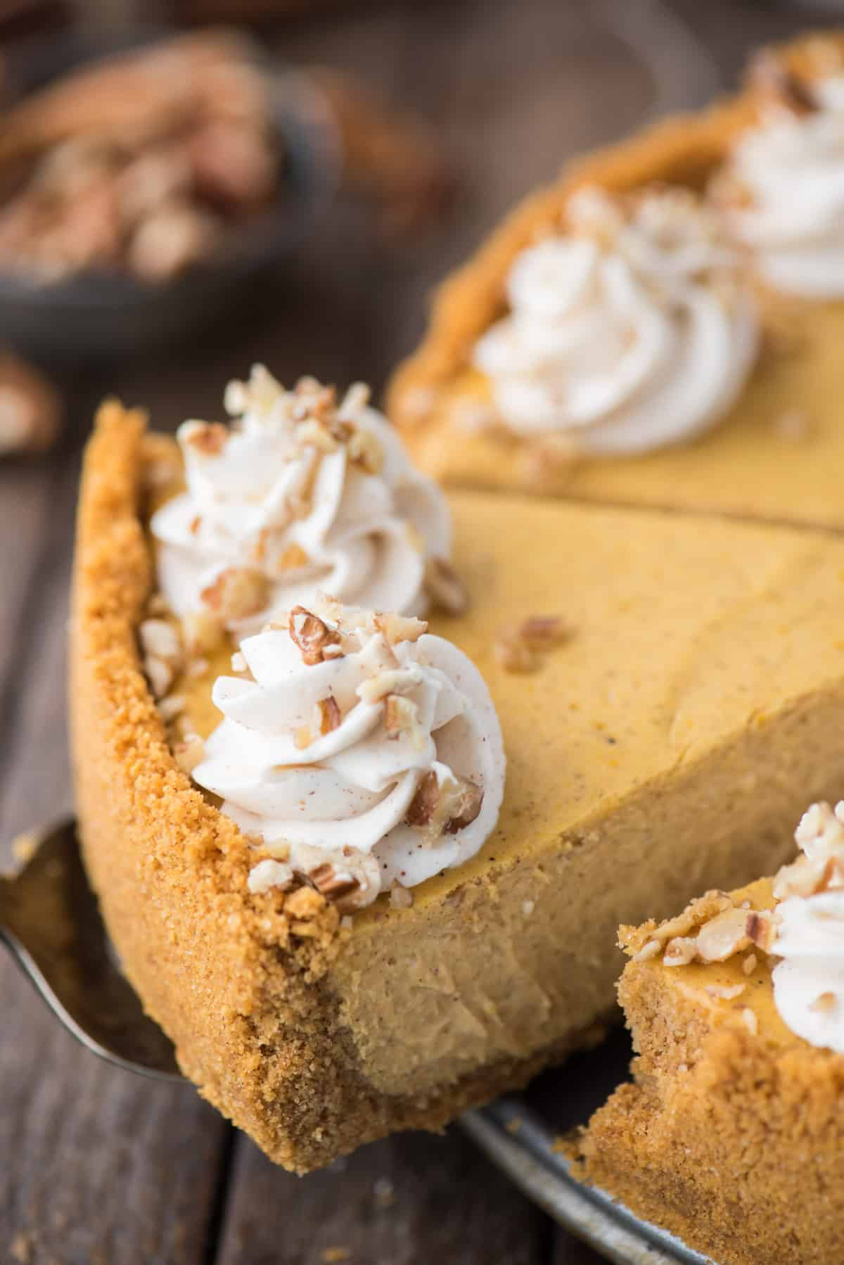 slice of pumpkin cheesecake with whipped cream swirls and chopped nuts being removed from cheesecake pan