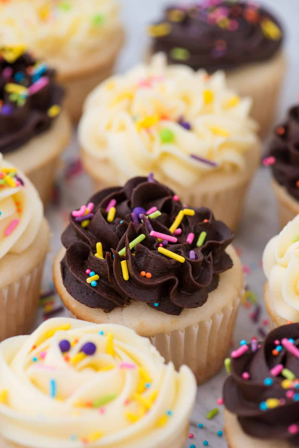 easy white cupcakes in a row with chocolate or vanilla frosting with colorful sprinkles