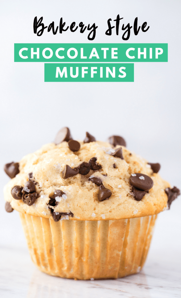 chocolate chip muffin on white background with text overlay