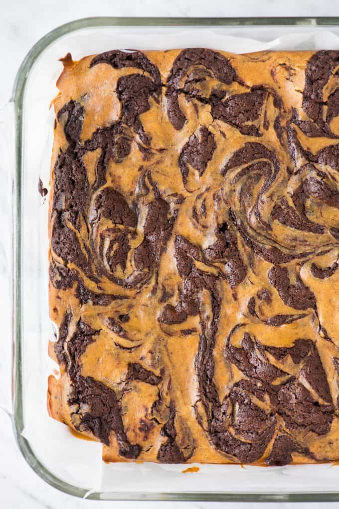 pumpkin swirled cheesecake brownies in glass pan on white background