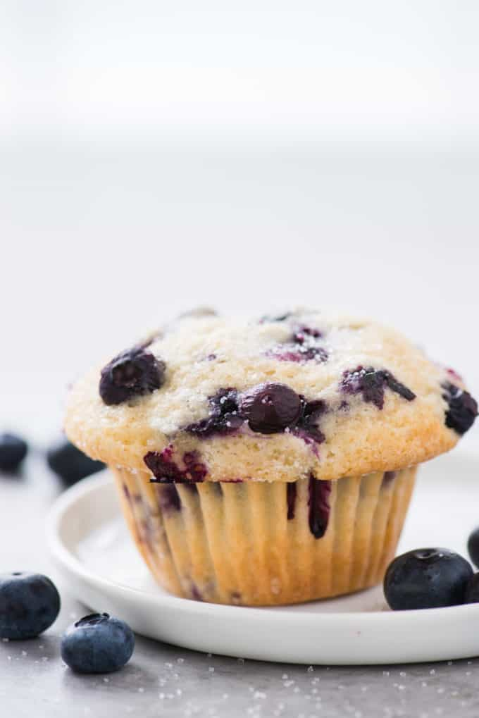 one blueberry muffin on white plate on white background