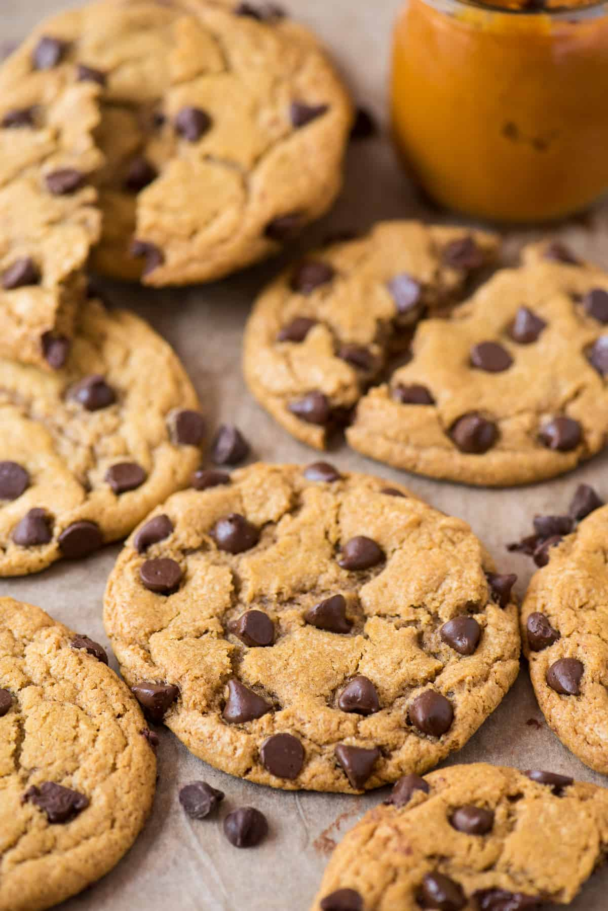 pumpkin chocolate chip cookies arranged on brown parchment paper with jar of pumpkin puree in the background